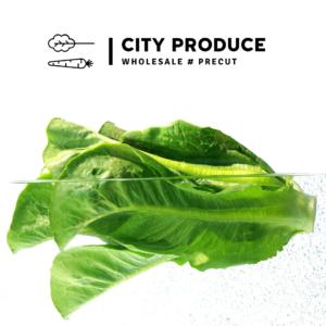 Cos lettuce each CPL